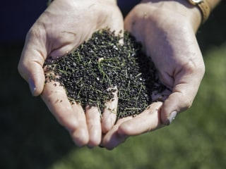 Feds Won't Say If Artificial Turf on Your Kid's Soccer Field Is Safe