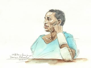 Dominic Adesanya, Accused White House Fence Jumper, Pleads Guilty
