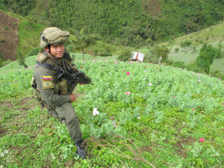 'Ground Zero': Tracking Heroin From Colombia to America's Streets