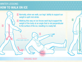 Blizzard Alert! Stay Safe on the Ice by Walking Like This Animal