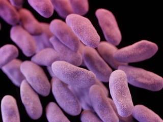 What's So Super About a Superbug?