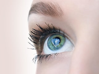 What's the Best Length for Eyelashes, Based on Science?