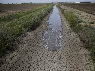 California Farmers Facing Another Scramble for Water