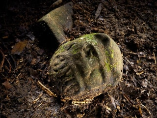 Lost 'City of the Monkey God' Discovered in Honduras
