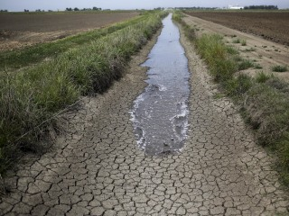 Dry Southern California Offers Northern Farmers Top Dollar for Water