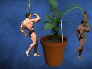 Nerd Watch: Duke Researchers Work to Grow Custom Muscles