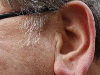 Why Do Older People Have Big Ears?