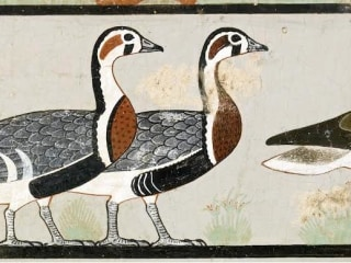 Egypt's Famous 'Meidum Geese' Painting May Be a Fake