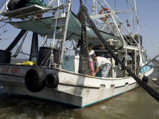 Five Years After BP Gulf Oil Spill, Vietnamese Fishermen Still Struggling