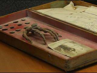 Skeleton Hand Found With Map Linked to Pirate Treasure
