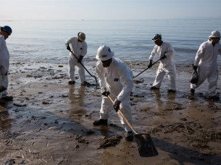 California Oil Spill: Up to a Fifth of Leaked Oil Recovered, Company Says