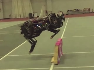 MIT's Cheetah-Bot Makes Running Jumps With Lifelike Ease