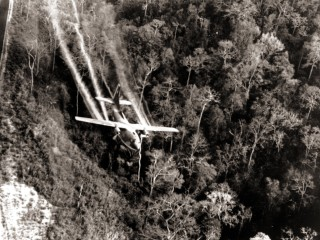 More Evidence Agent Orange Causes Cancer