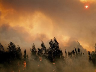 Obama's Alaska Trip Stresses Wildfires' Impact on Climate Change