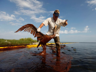 BP 2010 Oil Spill Settlement: A Timeline of Litigation