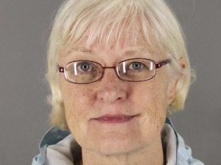 Serial Stowaway Arrested Twice in Chicago, Held on $100,000 Bond