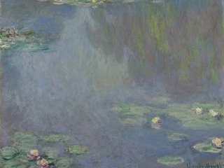 Claude Monet's Water Lily Paintings Almost Never Existed