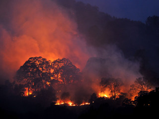Wragg Fire Wreaks Havoc on California Wine Country
