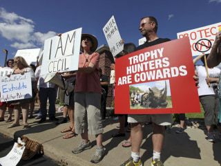 Activists: Lion's Death Draws More Outrage Than Black Deaths