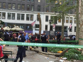 Five Hurt By Falling Tree Branch in New York City's Bryant Park
