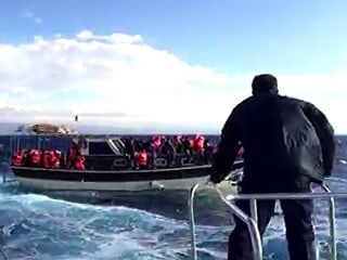 Migrants and Refugees Are Rescued From Boat Adrift Off Lesbos