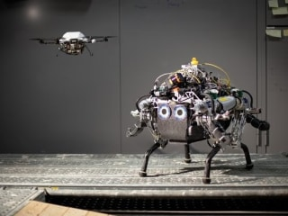 Robot Traverses Unknown Terrain With Flying Buddy's Help