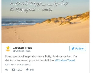 Fast-Food Restaurant Lets Live Chicken Run Its Twitter