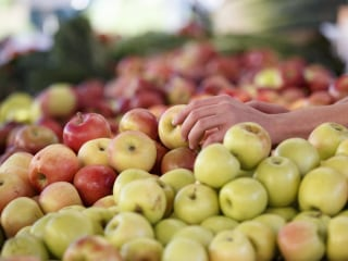 How to Pick the Right Apples and How to Use Them