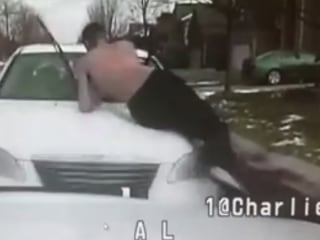 Michigan Man Flies Off Car Hood When It Rams Police Cruiser — on Video