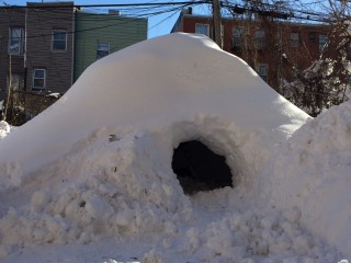 Brooklyn 'Igloo' Gets Iced by Airbnb's Rental Rules