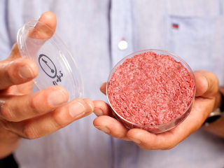 Can 'Cultured Beef' Ease Meat Industry's Environmental Impact?