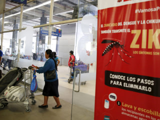 WHO Warns Pregnant Women on Travel to Zika Zones