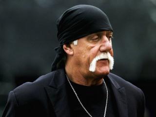 Hulk Hogan Sues Gawker, Again, Over Racist Comment Leak