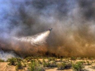 Arizona Wildfire Jumps Colorado River Threatening California