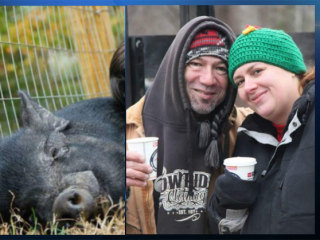 150-Pound Wild Boar Attacks Couple on Massachusetts Farm