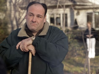 'Sopranos' Star James Gandolfini's Rolex Stolen by Paramedic: Officials