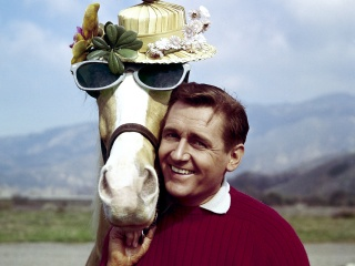 Alan Young, Star of 1960s Sitcom 'Mister Ed,' Dies at 96