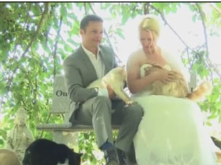 Couple's Purr-Fect Wedding With 1,100 Furry Guests