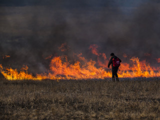 Russia Wildfire is Size of Vermont and Delaware: Greenpeace