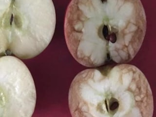 Teacher Uses Apples to Deliver a Powerful Lesson About Bullying