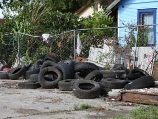 Zika Virus Hotspot: Houston's Two Cities