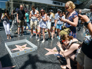 Artist Builds Mini Wall Around Trump's Hollywood Walk of Fame Star