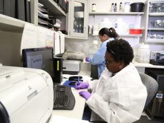 Zika Virus Arrives in South Texas