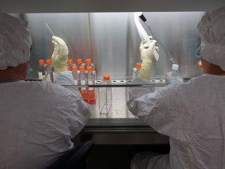 New Zika Vaccine Starts Wider Testing
