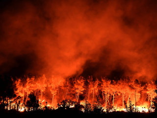 Thousands Evacuated as Several Fires Blaze Across Southern France