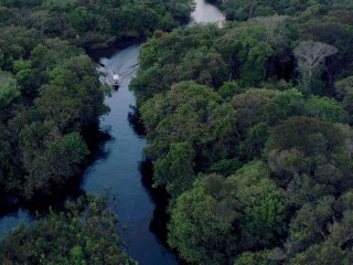 Protecting the Amazon: Tom Brokaw Explores World's Largest Rainforest