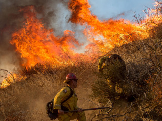 Crews Fight to Contain California's Blue Cut Wildfire