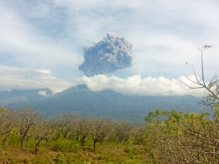 Indonesia's Mount Barujari Volcano Erupts, Trapping Tourists
