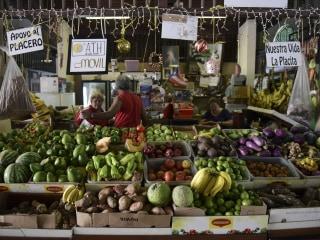 Puerto Rico Experiences an Agricultural Renaissance