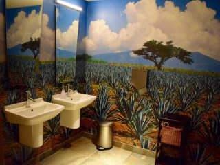 Bathroom Contest Finds America is Flush With Thoughtful Thrones